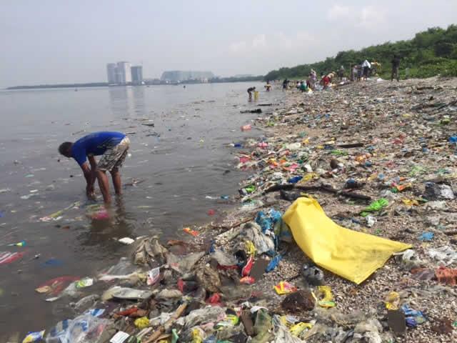Volunteers cleaning up trash along Manila Bay. Photo: Bombona78 - wikimedia.org